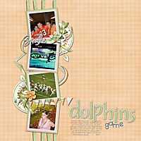 dolphins-game-small.jpg