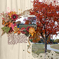 dt-flavors-of-fall-2-mary.jpg