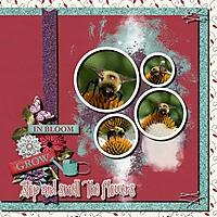 fadedphotomask2b-000-Page-1.jpg