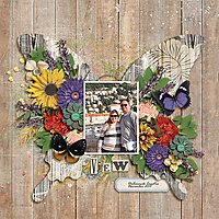fdd_ButterfliesandBlossoms_DU_tp1_600.jpg