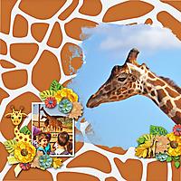 giraffe20.jpg