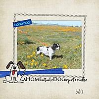 good_dog_small_edited-1.jpg