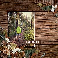 gs-intothewoods-ck01.jpg