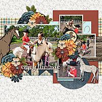 h-enjoy-the-ride1.jpg