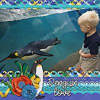 h-penguin-love-swim.jpg