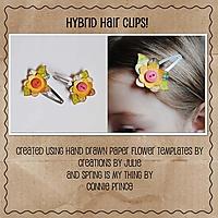 hair_clips.jpg