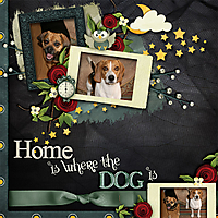 home_is_where_the_dog_is_copy.jpg
