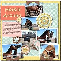horseCapture.JPG