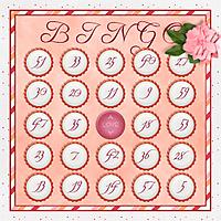 iNSD_2013_GS_Bingo-web.jpg