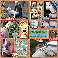 jane_leffman_sml_martha_moo_10_yr_gotcha_day_2019_cmg_a_dogs_life_dt-pocketfuloflove1-temp3.jpg