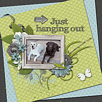 just-hanging-out1.jpg