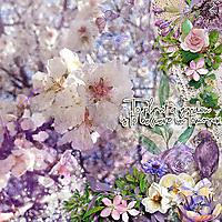 kakleid_Early_blooming.jpg