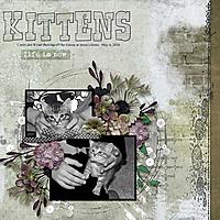 kittens_small.jpg