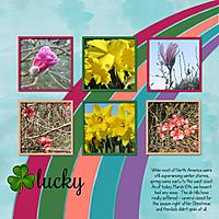 lucky_spring.jpg