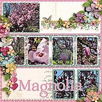 magnolia-copy.jpg