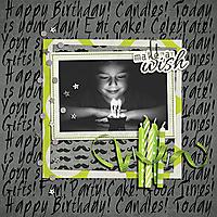make-a-wish-2013.jpg