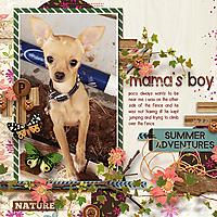 mamas-boyWEB.jpg