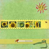 mk-sundrops-deasue-01-250.jpg