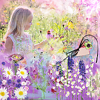 nbk-Wildflowers.jpg