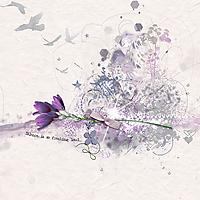 nbk-design-lavender-treasure1.jpg