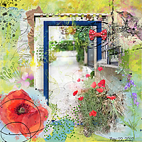 nbk_Wildflowers.jpg