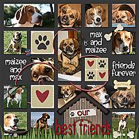 our_best_friends2.jpg