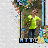 p52_week_14.jpg