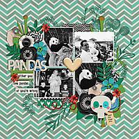 pandas-web.jpg