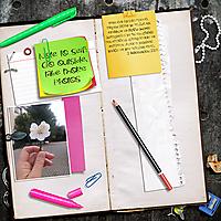 paula-kesselring-my-personal-notes-Old-Notebooks-1.jpg
