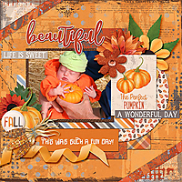 perfect_pumpkin_Aprilisa_Pp173_fb_rfw.jpg