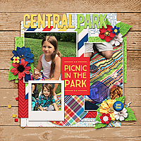picnic-copy.jpg