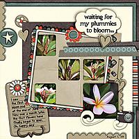 plummies_template_copy.jpg