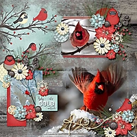 ppd_SmrTmpV4_msgFF_Cardinals_web.jpg