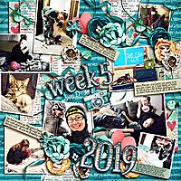 project-life-p52-week-5.jpg