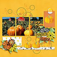 pumpkins2021-copy.jpg