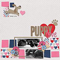 puppy-love13.jpg