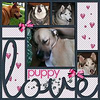 puppylove4.jpg