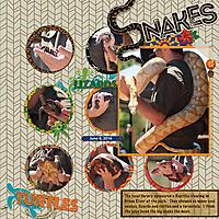 reptiles-web-SwL_10_16MISTemplate.jpg