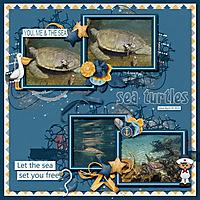 sea_turtles_small.jpg