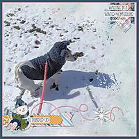 snickesr-in-the-snow-small.jpg