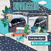 snowmaggedon2019-web.jpg