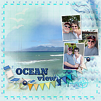 snp_SA_oceanview_Hawaii2015_web.jpg