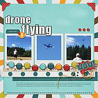 snp_mlAug_dts_CaptureMyWorld_droneflying_web.jpg