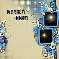snp_sg_moonlitNight-web.jpg
