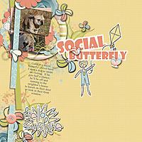social-butterfly.jpg
