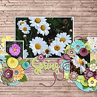 spring-blooms.jpg