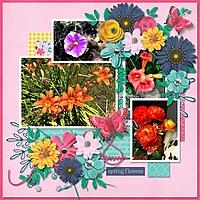 springblooms19.jpg