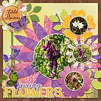 springwildflowers.jpg