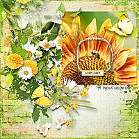 sunflower-copy.jpg