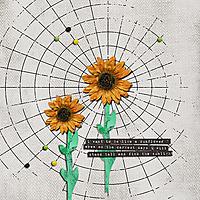 sunflowers11.jpg